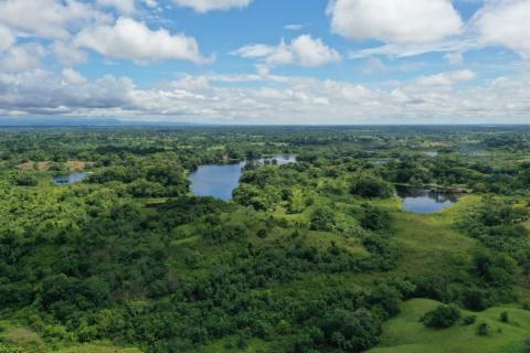Se siembran 405 árboles como parte de las compensaciones ambientales del proyecto Bucaramanga-Barrancabermeja-Yondó